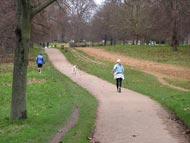 Runners With Dog Hyde Park