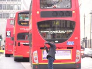 Red Double-Decker Buses Photos